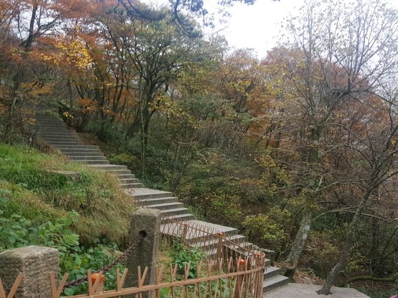 Huangshan Autumn