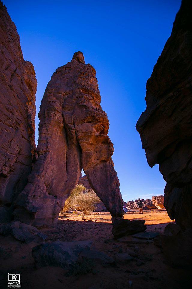 صور نادرة للطبيعة الجزائرية - صفحة 19 40205396625_1515706a98_b