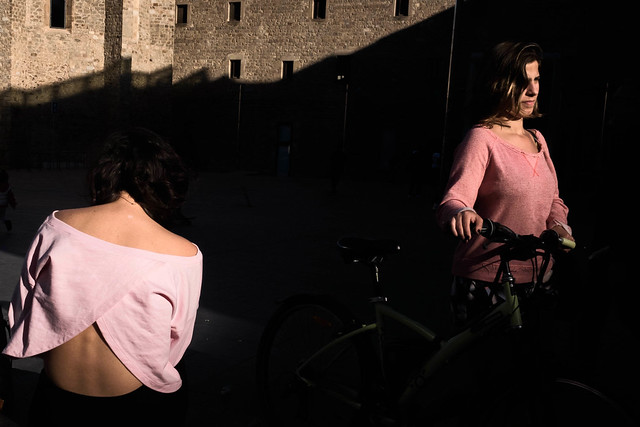 Two pink roses, Fujifilm X-Pro2, XF23mmF1.4 R