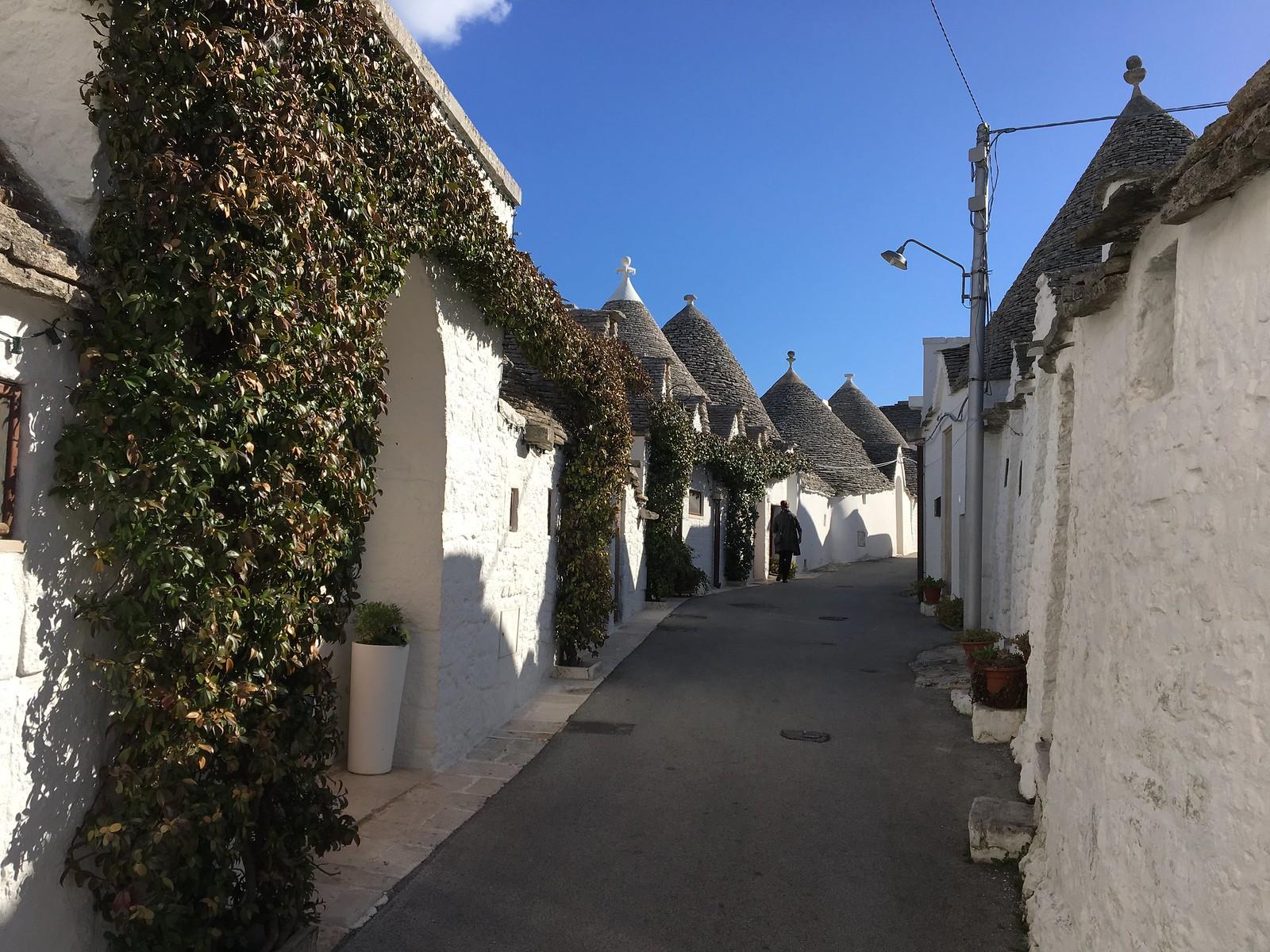 Alberobellon trullitalot