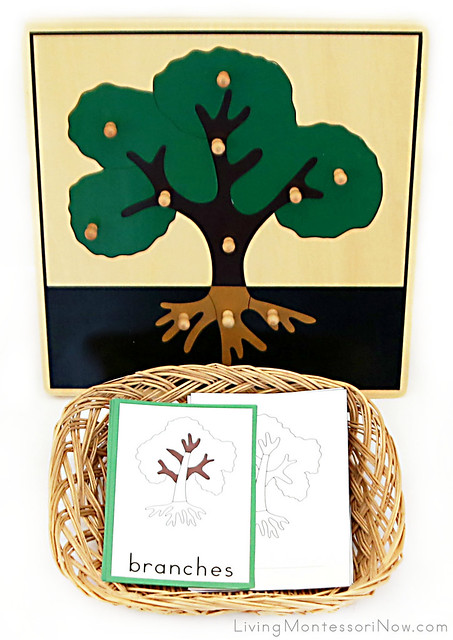 Parts of a Tree Puzzle, Cards, and Booklet-making Materials