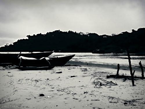 Resting Boats | Anita