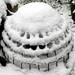 Bird dome