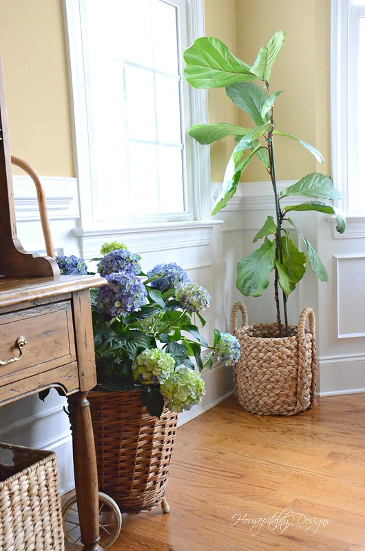 Hydrangeas-Housepitality Designs-3