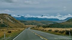 On the road from Christchurch to Arthur's Pass