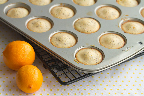Meyer Lemon Poppyseed Tea Cakes