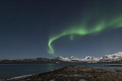 Nordlicht am Strand von Brensholmen, Norwegen