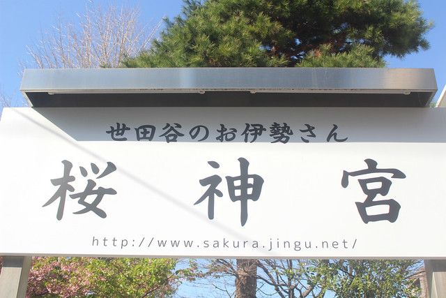 sakurajingu-gosyuin004