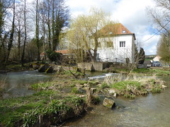 Clerques Moulin d'Audenfort (2) - Photo of Licques