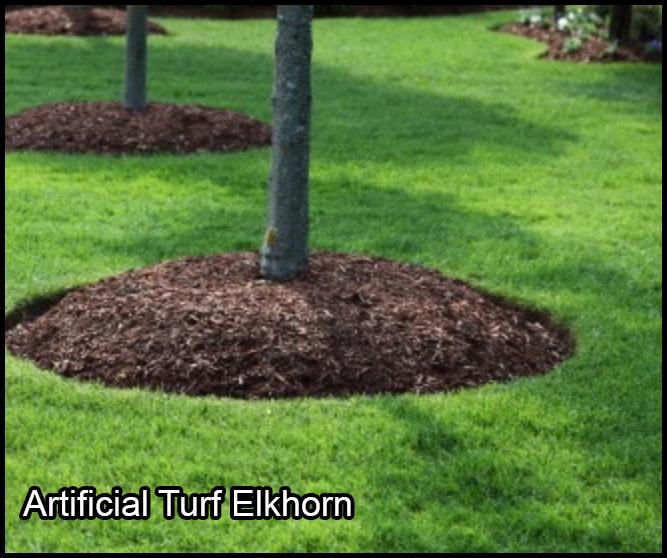 artificial turf elkhorn