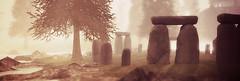 Walking amongst the stones