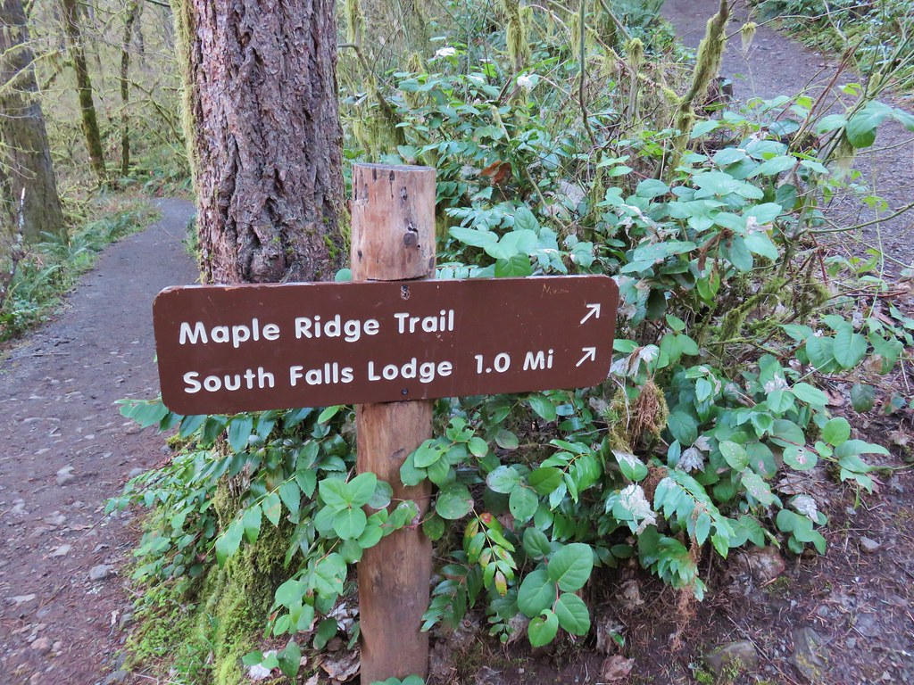 Maple Ridge Trail junction