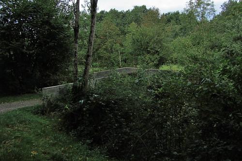 20120925 27 134 Jakobus Wald Weg Brücke Pont du Diable