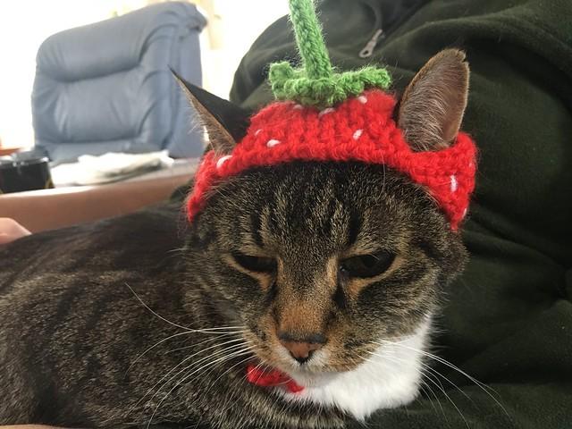 Murderface Strawberry
