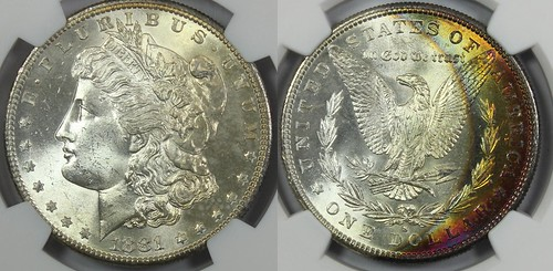 1881-S Morgan Toned NGC MS64 Star Toned 2