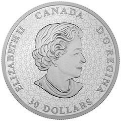 $30 Fine Silver CNIB_Obv