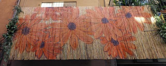 Temps de flors_0302
