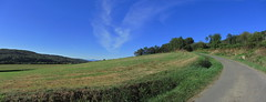 20120920 23 070 Jakobus Weg Hügel Wald Wiese_P01 - Photo of Artagnan