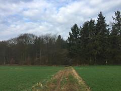 Fleury-la-Forêt01
