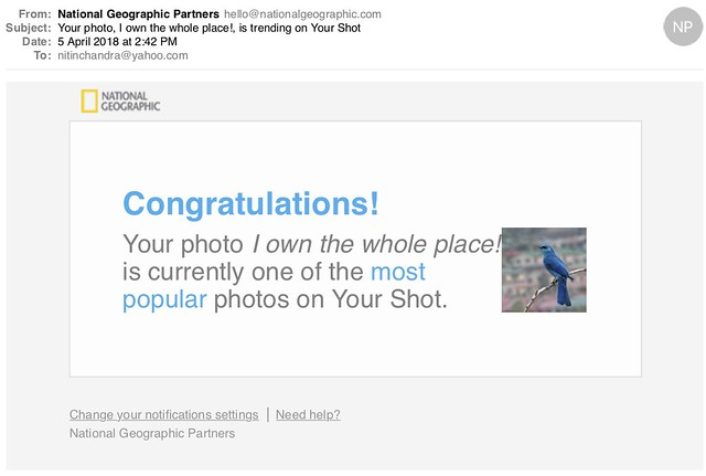 Your photo I own the whole place is trending on Your Shot
