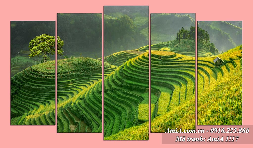 AmiA 1117 - Tranh quê hương ruộng bậc thang Việt Nam