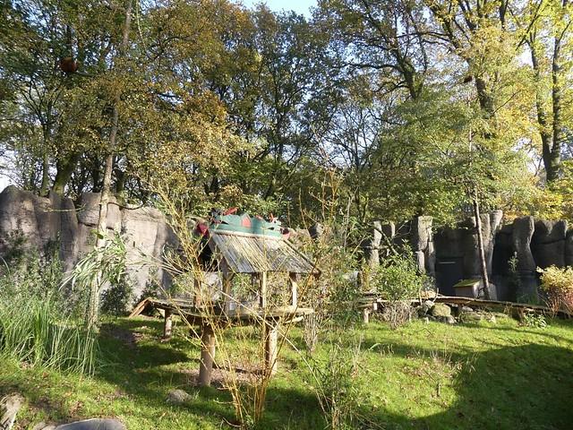 Kleiner Panda Anlage, Ouwehands Dierenpark, Rhenen