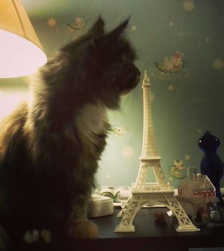 Sonia_in_Paris
