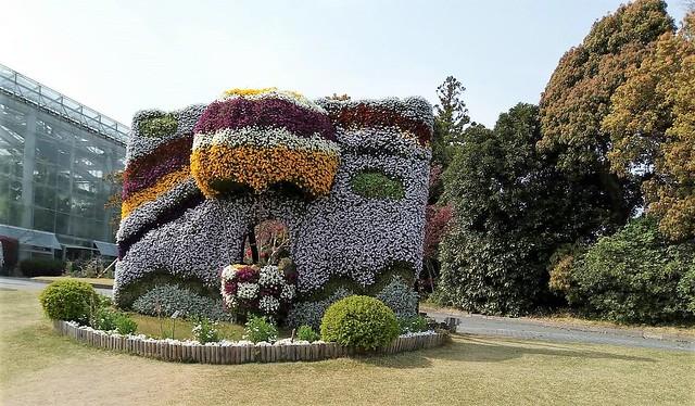 濱松花卉主題公園 (12)