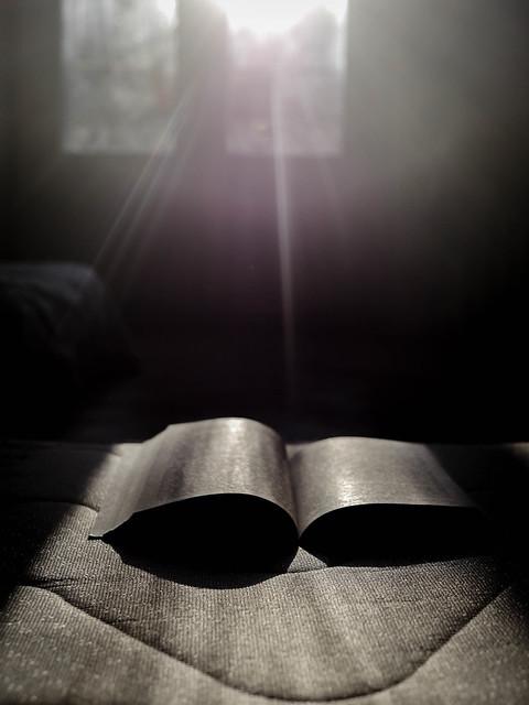 Reading sunlight, Panasonic DMC-G5, LUMIX G 25/F1.7