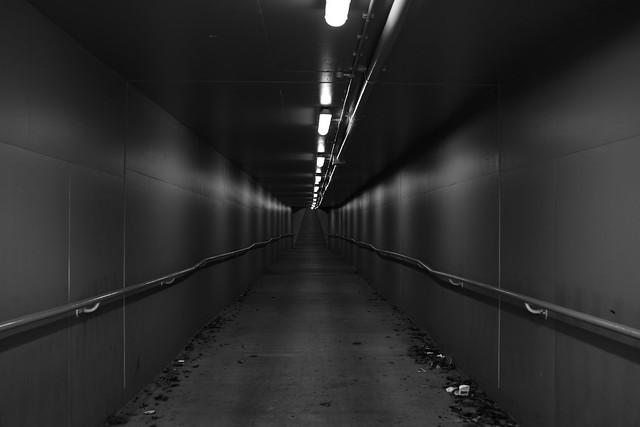 Caulfield racecourse walkway, Nikon D7100, AF Zoom-Nikkor 24-120mm f/3.5-5.6D IF