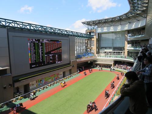 福島競馬場のパドックを4階から見下ろす