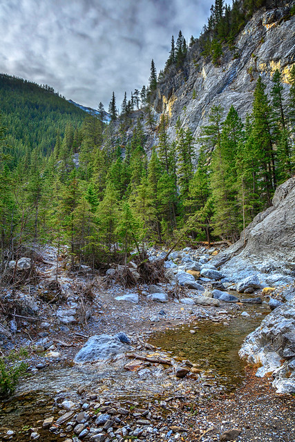 Heart Creek, Canmore