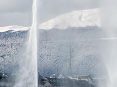 2018 Bord du lac Genève