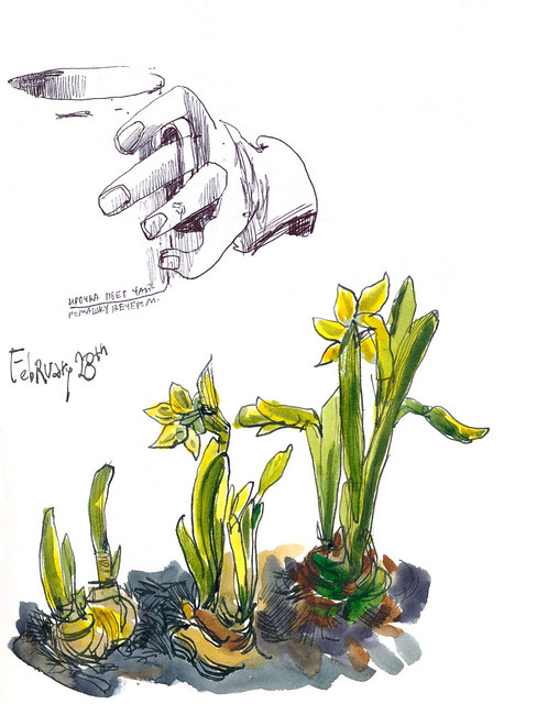 Sketchbook #112: The story of old bulbs