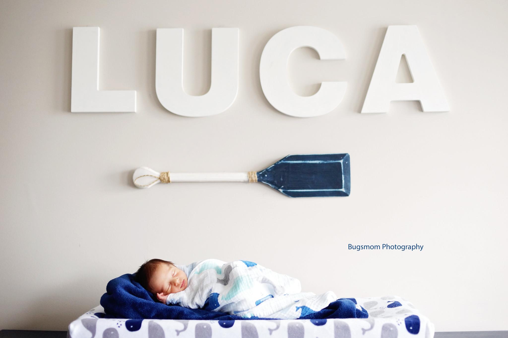 luca1