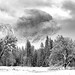 Winter Wonderland by tom911r7