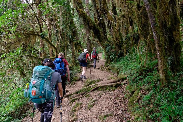 Kilimanjaro - Blog-2
