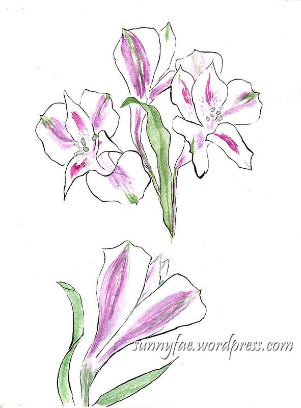 Mothers day flowers Sketch