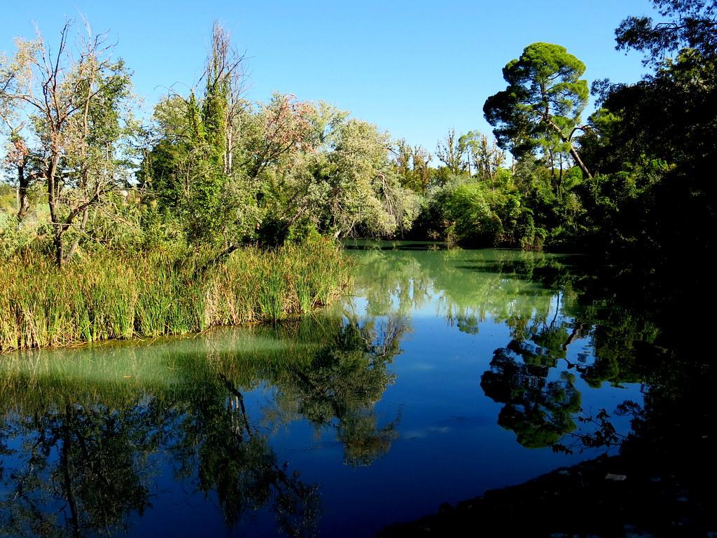 Río Tajo en octubre