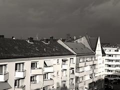 Sunny buildings on a grey sky