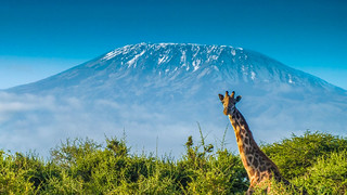 Mt. Kilimanjaro - The Roof of Africa