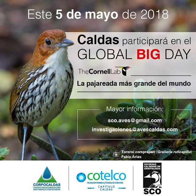 El próximo 5 de mayo, Caldas participará en el Global Big Day