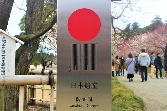 kairakuen-umed012