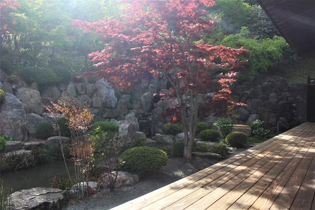 houtokuji-gosyuin04007
