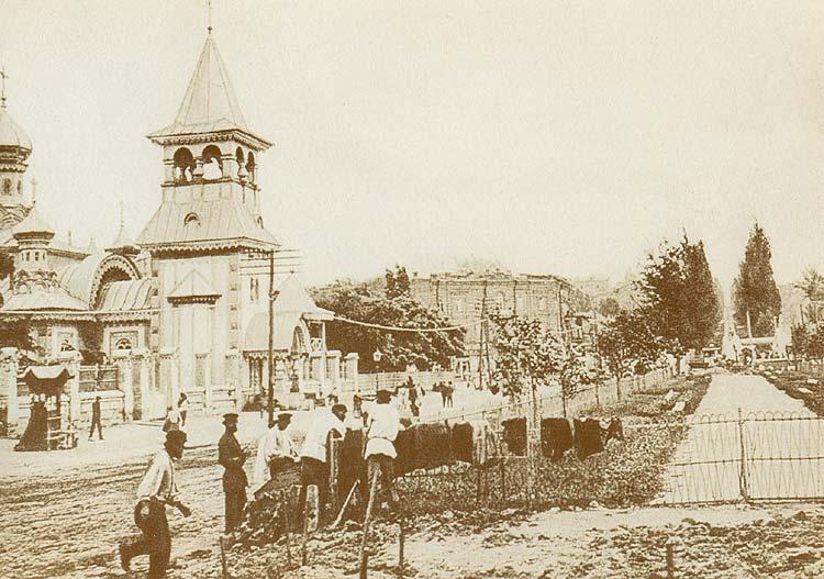 Киевские каштаны