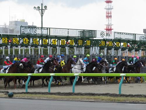 福島競馬場のダート1700mのスタート