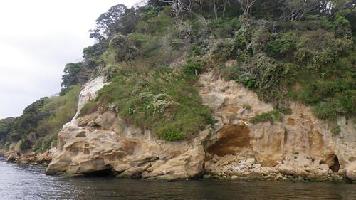 Sarushima「猿島」