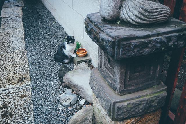 秋葉原|Akihabara
