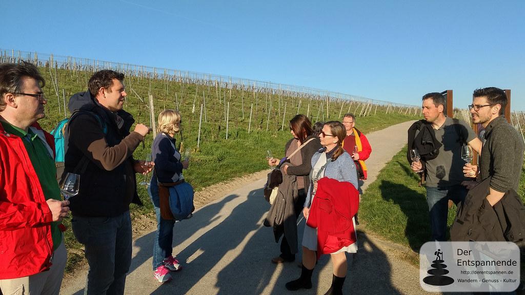 Weinwanderung mit Stefan Braunewell nach Essenheim, Vinocamp Rheinhessen 2018
