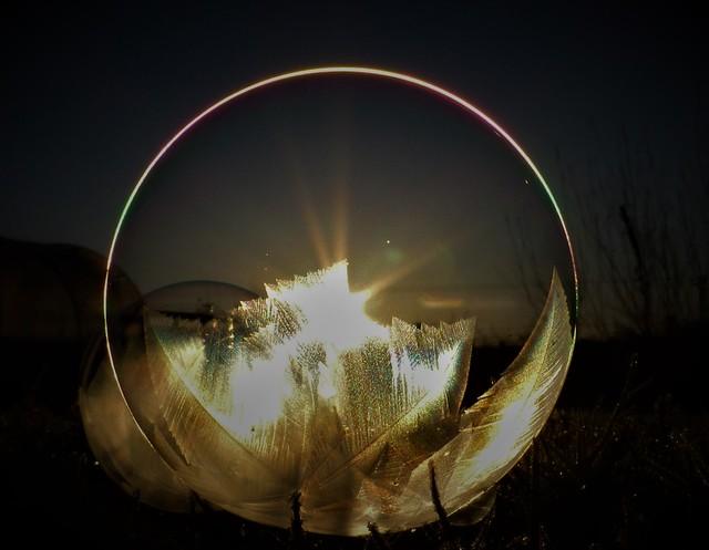Ring of Light..x
